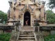libertedelafesse_birmanie101